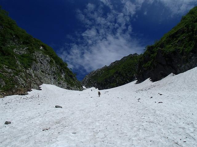 夏・雪渓をつめる