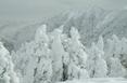 Snowmonster_to_azumayasan